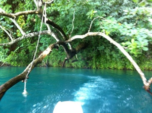 Tree swing over the Blue Lagoon