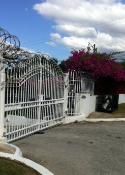 Such a pretty security gate.